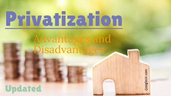 What are the pros and cons of privatization?