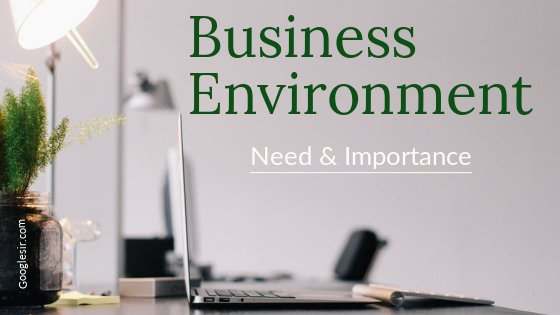 need and importance of business environment