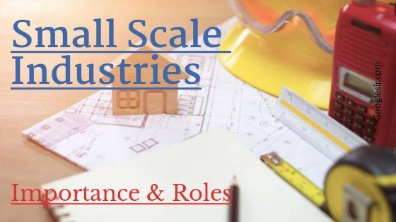 role and importance of small scale industries