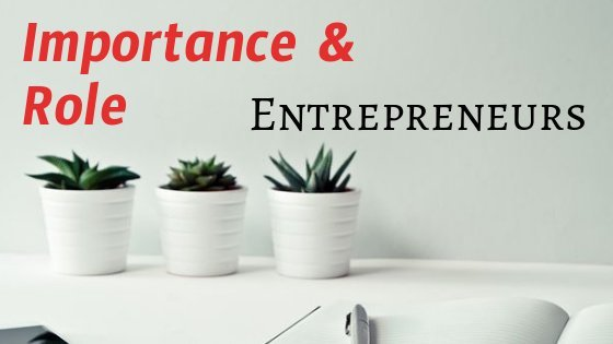 role and importance of entrepreneur