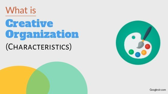 characteristics of a creative organization