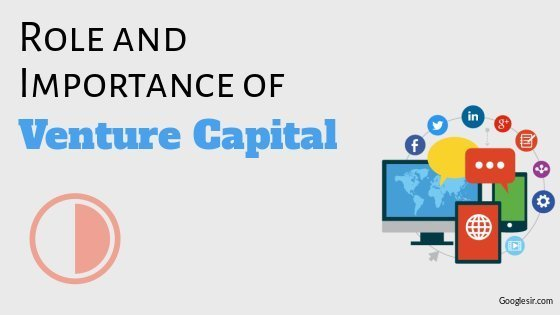 role and importance of venture capital