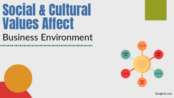 Social and Cultural Values Affect Business Environment