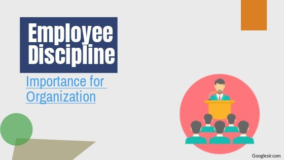 importance of discipline in an organization